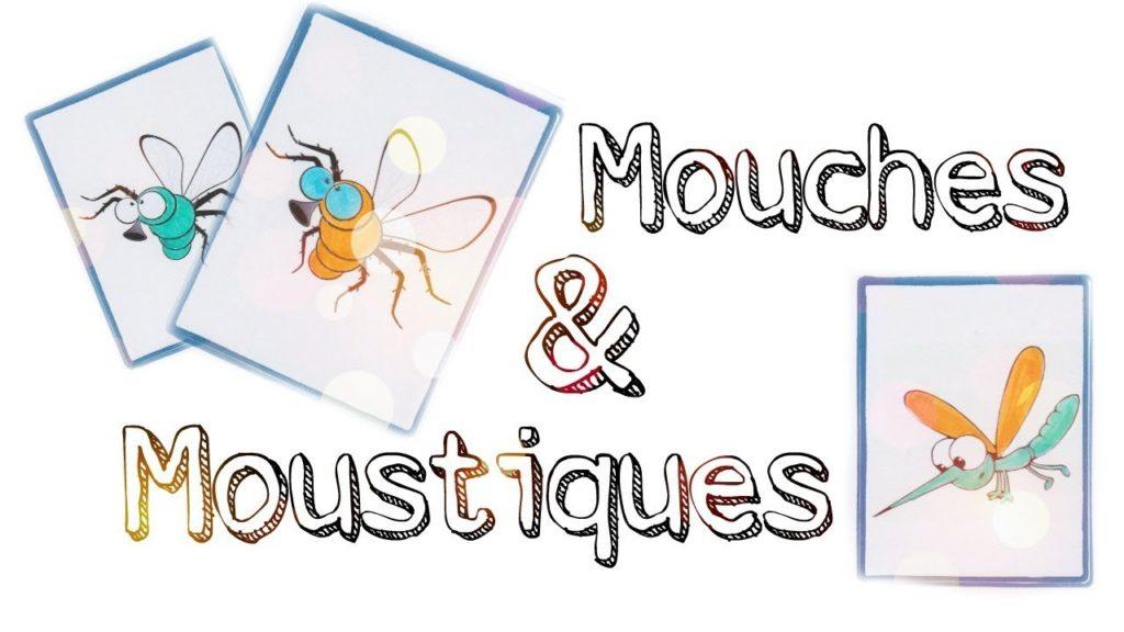 jeu mouches et moustiques flexibilité mentale